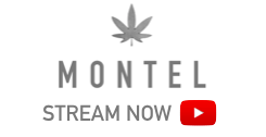 Montel Williams Featuring EpicHint (Stream Now)